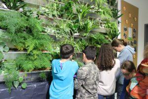 Kinder bepflanzen die unteren Reihen - © Projektteam GRÜNEzukunftSCHULEN